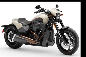 Ra mắt 2019 Harley-Davidson FXDR 114, giá 500 triệu đồng