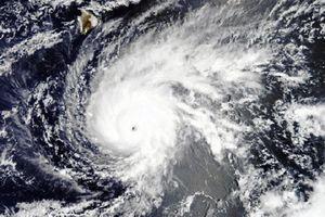Siêu bão đổ bộ Hawaii: Máy bay, tàu chiến Mỹ gấp rút di dời