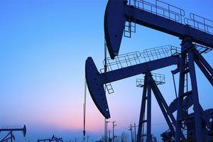 Chuỗi 5 phiên tăng của giá dầu chấm dứt