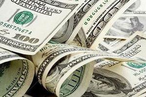 Tỷ giá ngoại tệ 24/8: USD bật mình tăng trở lại
