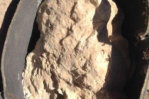 Hũ phô mai cổ nhất thế giới trong ngôi mộ 3.300 tuổi ở Ai Cập