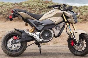 Honda MSX125 được 'phù phép' thành xe điện, sức mạnh gấp 3 lần