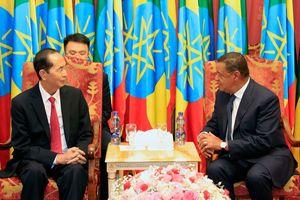 Tăng cường hợp tác sâu rộng Việt Nam - Ethiopia