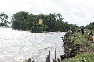 Lũ Ðồng bằng sông Cửu Long sẽ lên trong tuần tới