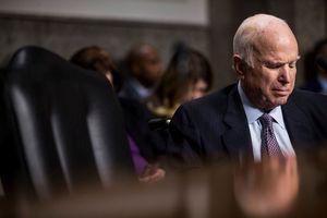 Thượng nghị sĩ John McCain đột ngột ngừng điều trị ung thư não
