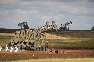 Chuỗi 7 tuần giảm giá của dầu chấm dứt