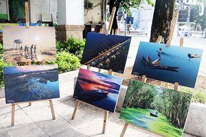 Ngày mới trên Đầm Chuồn giành giải nhất cuộc thi bảo tồn đất ngập nước