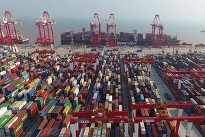 Mỹ có thể sử dụng vũ khí bí mật: Trục xuất Trung Quốc ra khỏi WTO