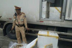 Thanh Hóa: Bắt xe tải vận chuyển hơn 3 tạ nội tạng hôi thối