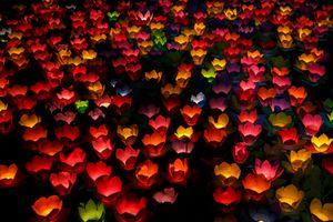 Hàng nghìn hoa đăng lấp lánh trên sông Sài Gòn