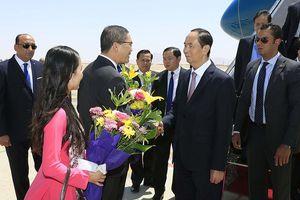 Chuyến thăm của Chủ tịch nước Trần Đại Quang mở ra triển vọng hợp tác mới với Ai Cập