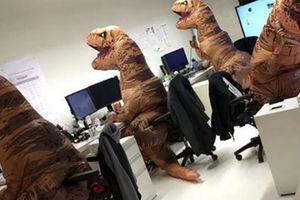 Hình ảnh khó đỡ khi 'đột nhập' văn phòng của dân công sở