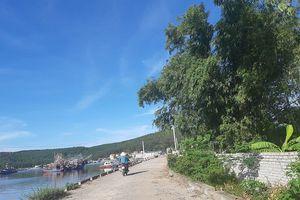 UBND tỉnh Nghệ An yêu cầu làm rõ việc cấp đất trên dự án đường kè ven biển
