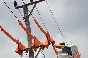 Đắk Nông: 'Thót tim' nhìn công nhân sửa chữa khi lưới điện chưa cúp