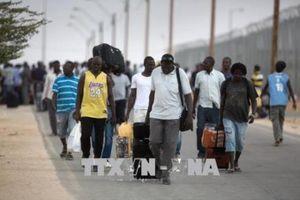 AfDB ưu tiên hỗ trợ tạo việc làm cho thanh niên châu Phi