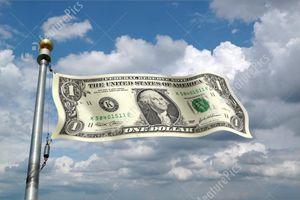 Những mối đe dọa đối với vị thế độc tôn của đồng USD trong thương mại quốc tế