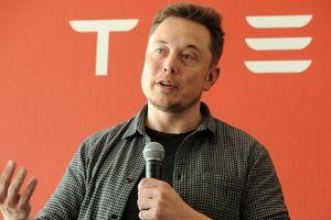Elon Musk từ bỏ kế hoạch tư nhân hóa, giá cổ phiếu Tesla sụt mạnh