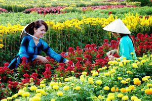 Nơi sắc hoa trở thành phần không thể thiếu trong cuộc sống của chị em phụ nữ