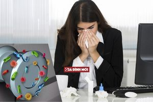 Bàn làm việc nhiều vi khuẩn hơn bồn cầu tới 400 lần, dân văn phòng có thể mắc những bệnh không ngờ tới