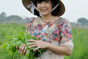 Làm giàu ở nông thôn: Bỏ lương nghìn đô về trồng rau 'hoàng đế'