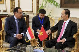 Triển khai hiệu quả các thỏa thuận hợp tác Việt Nam - Ai Cập