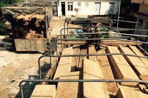 Tấn công lực lượng bảo vệ rừng để 'giải cứu' ô tô chở gỗ lậu