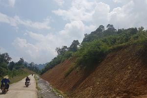 Võ Nhai, Thái Nguyên: Hàng chục nghìn m2 đất rừng đặc dụng bị phá để làm đường