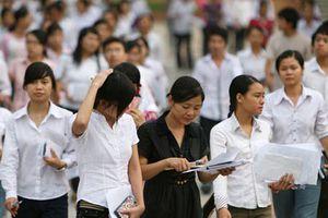 Đại học đa lĩnh vực: 'Quả đấm thép' của giáo dục đại học Việt Nam