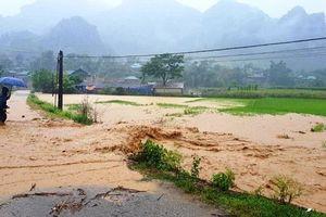 Điện Biên thiệt hại hơn 7 tỷ đồng do mưa lũ gây ra