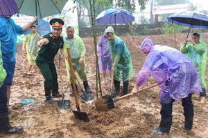 Tuổi trẻ Thủ đô 'đội mưa' trồng 600 cây xanh tại Khu di tích K9