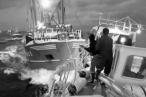 Ngư dân Anh - Pháp lao vào 'trận chiến sò'