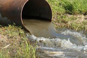 Bốn đơn vị thủy sản bị phạt hơn 800 triệu đồng vì xả thải ra môi trường