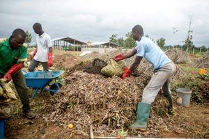 'Biến rác thành vàng' - Câu chuyện ở châu Phi