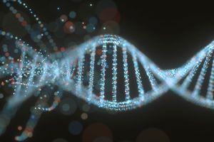 Độc đáo startup công nghệ mở 'chợ' trao đổi dữ liệu ADN