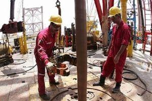NIDC (Iran) ký thỏa thuận khoan và sửa chữa các giếng dầu tại Iraq