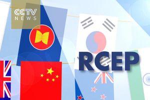 Các nước RCEP muốn hoàn tất thỏa thuận trước cuối năm 2018