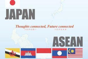 Hợp tác ASEAN - Nhật Bản: Thành tựu trên nhiều lĩnh vực