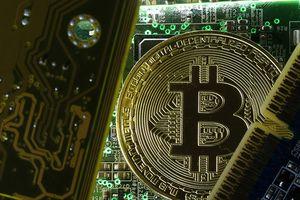 Giá Bitcoin hôm nay 30/8: Khối lượng giao dịch tăng mạnh lên 9 tỷ USD