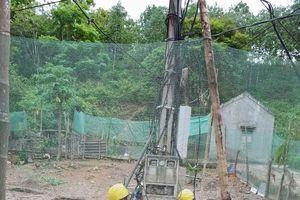 Nhanh chóng khắc phục sự cố lưới điện do mưa lũ