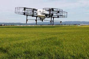 Drone giúp kéo giới trẻ trở lại với nông thôn