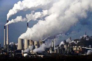 2 công ty bị xử phạt vì gây ô nhiễm môi trường tại Phú Yên
