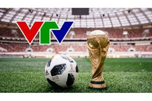 VTV đã có bản quyền AFF Cup 2018