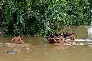 Huyện Yên ĐỊnh di dời 1.339 hộ dân khỏi vùng ngập lụt đến nơi an toàn