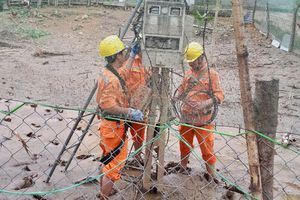 Tổng công ty Điện lực miền Bắc: Khắc phục sự cố sau mưa lũ