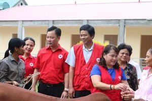 Hội Chữ thập đỏ TP tổ chức nhiều hoạt động nhân đạo tại huyện Phú Thọ