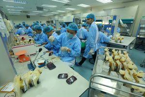 Bên trong 'phân xưởng' điều chế máu lớn nhất miền Bắc
