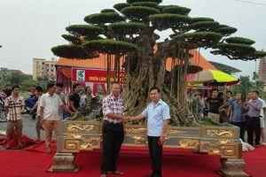 Đại gia Việt chơi ngông, dát vàng bể cảnh: Sự thật khác