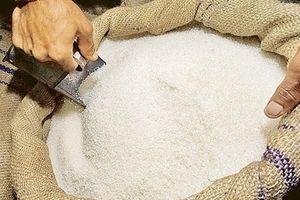 Đấu giá nhập khẩu đường với giá khởi điểm 1,4 triệu đồng/tấn
