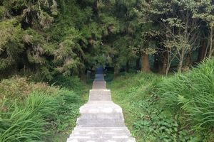 Đến Alishan, thưởng thức cảnh núi non rừng thẳm còn đẹp như đang quay MV