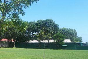 Tĩnh Gia: Công ty T&M xây dựng cơ sở may trái phép trong trường học
